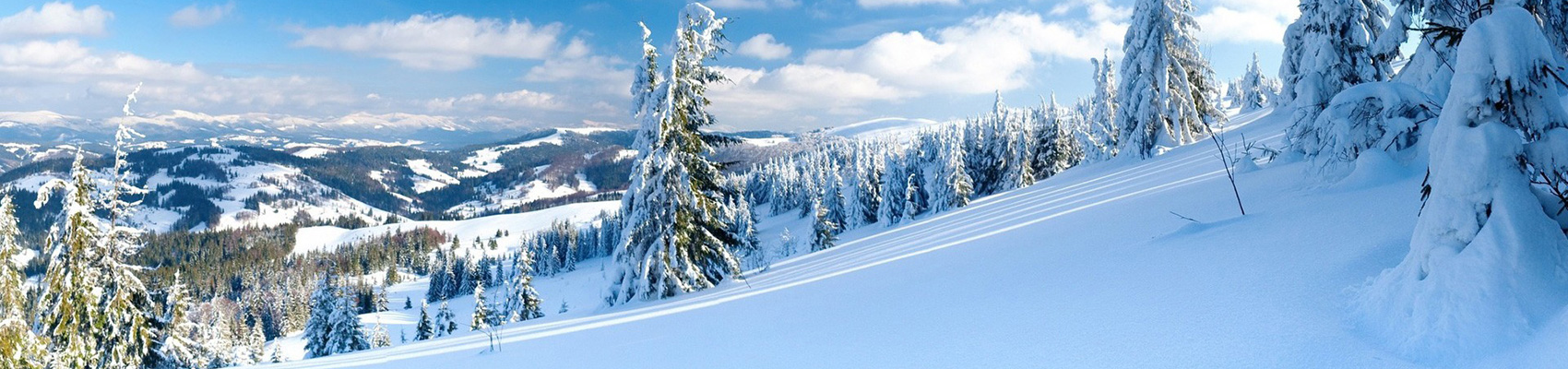 snow-bgd